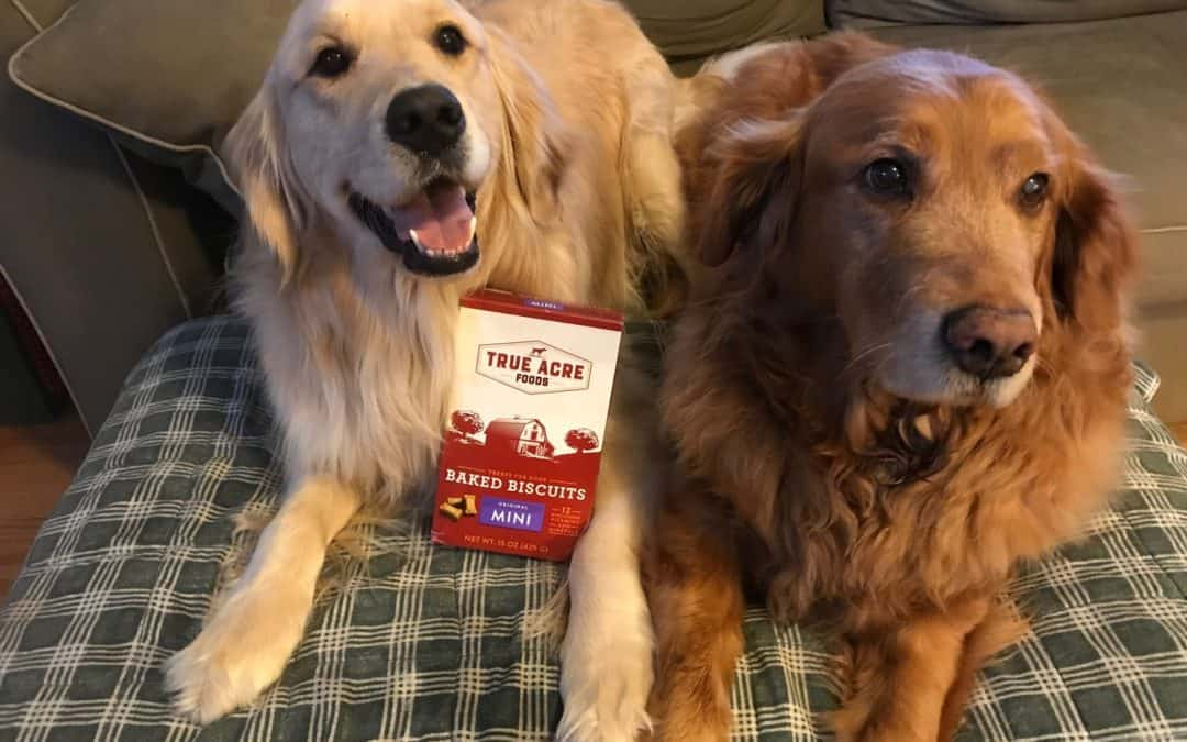 crunch crunch nom nom True Acre Foods treats  #ChewyInfluencer