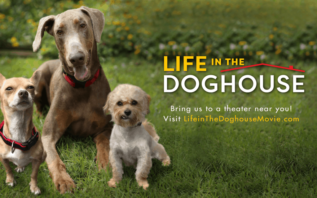 Movie Review- Life in the Dog House