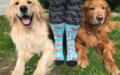 Custom socks featuring your own pet!