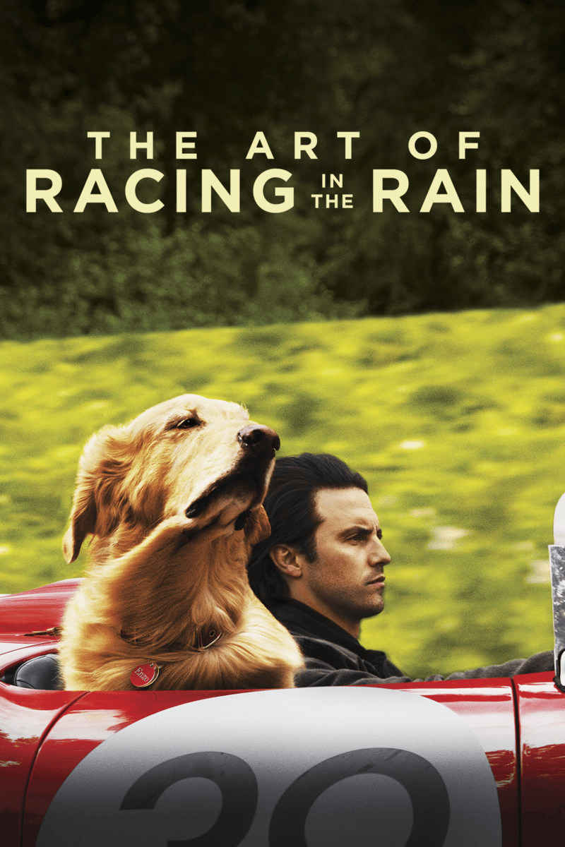 Bring Enzo Home- The Art of Racing in the Rain on DVD