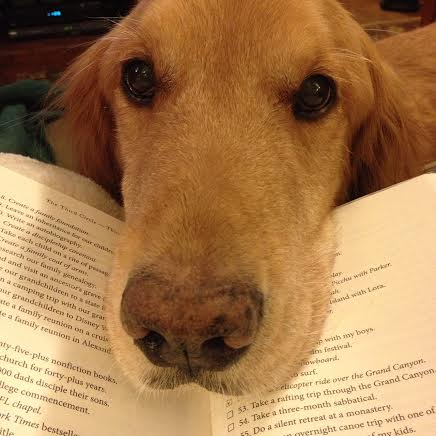 Let's WOOF About Our Favorite Dog Books