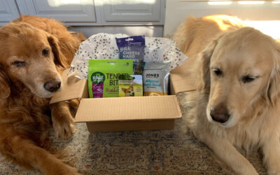 Let's WOOF about Buster and Dickens pet shoppe