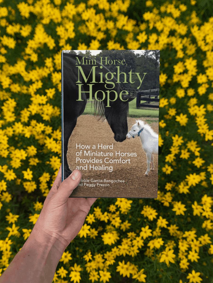 Be the First to See the new Trailer for Mini Horse, Mighty Hope