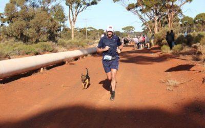 Dog Who (Accidentally) Run Marathons!